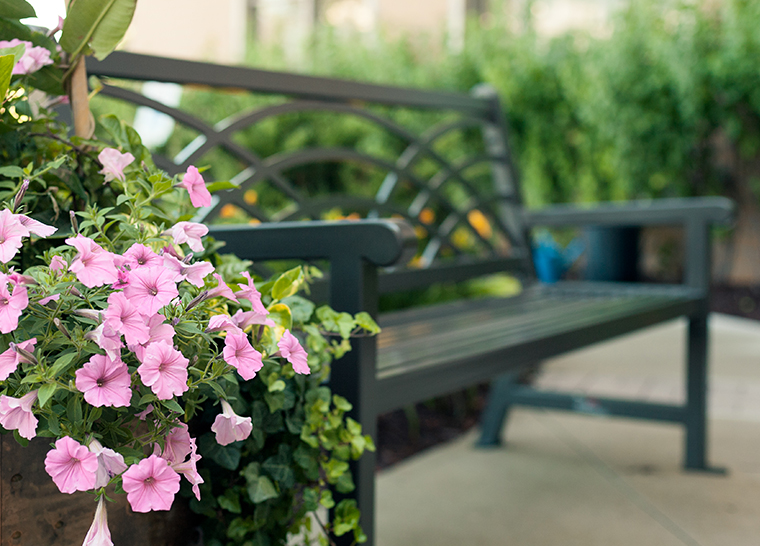 Whitby beautiful park bench with pink flowers