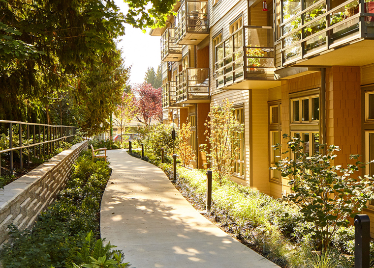 Walking path with trees at Amica Edgemont Village senior living residence.